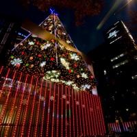 avex group本社ビル クリスマスツリー