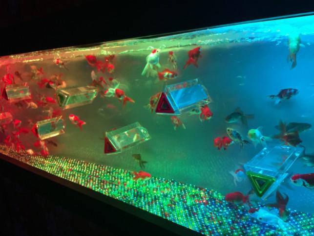 アートアクアリウム展 ~大阪・金魚の艶~