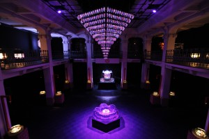 THE BEAUTIFUL WORLD OF ART AQUARIUM (Milan)